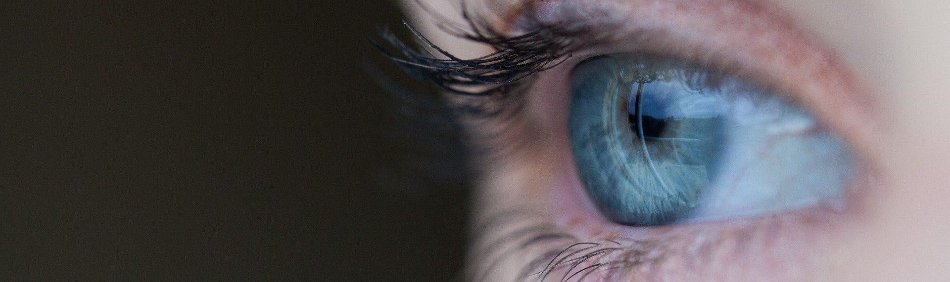 Auge und die richtige Brille